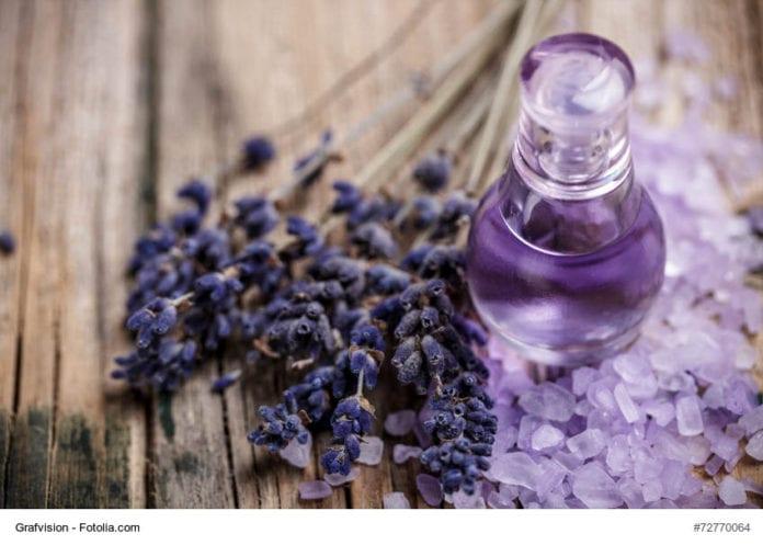 Lavender Perfume Image