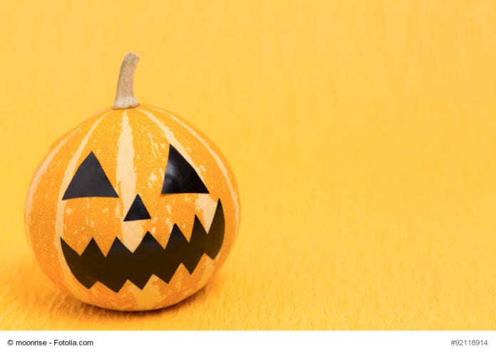 Orange Pumpkin Image