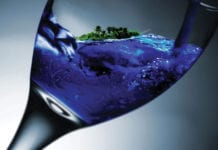 Water-Glass-Image