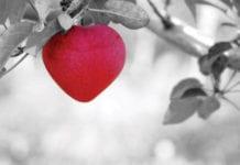 Heart-Apple-Image