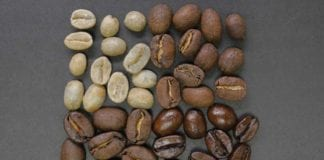 Coffee_Beans_Image