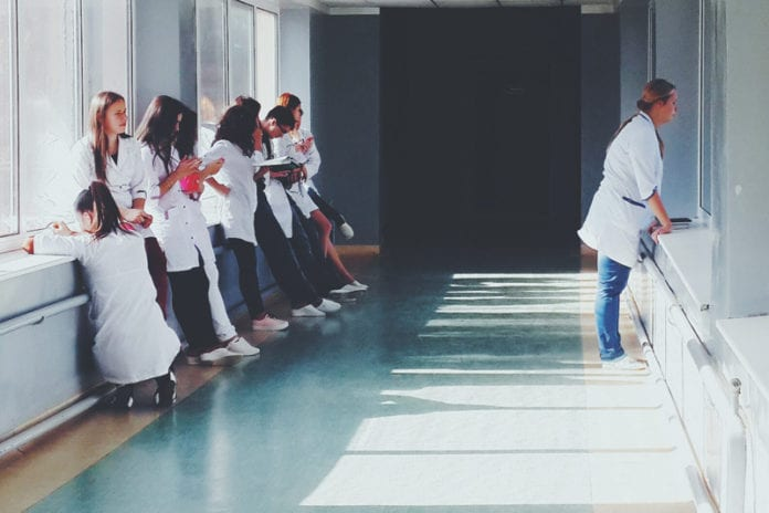 how to become a licensed nurse practitioner