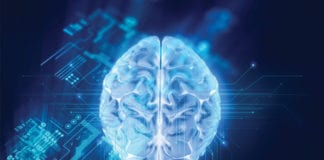 """Brain processing"""